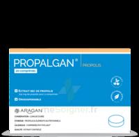 Aragan Propalgan Comprimés orodispersibles adulte B/20 à TOULENNE