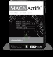 Synactifs Magnactifs Gélules B/60 à TOULENNE