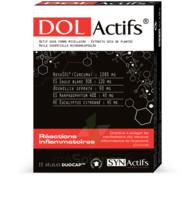 Synactifs Dolactifs Gélules duocaps B/15 à TOULENNE