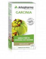 Arkogélules Garcinia Gélules Fl/45 à TOULENNE