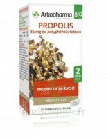 Arkogélules Propolis Bio Gélules Fl/45 à TOULENNE