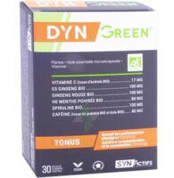 Synactifs Dyngreen Bio Gélules B/30 à TOULENNE