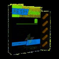 Synactifs Respigreen Bio Gélules B/10 à TOULENNE
