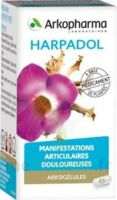ARKOGELULES HARPAGOPHYTON Gélules Fl/150 à TOULENNE