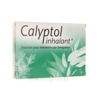 CALYPTOL INHALANT, émulsion pour inhalation par fumigation à TOULENNE