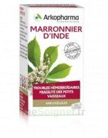 ARKOGELULES MARRONNIER D'INDE, gélule à TOULENNE