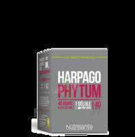 NUTRISANTE Harpagophytum Gélules B/40 à TOULENNE