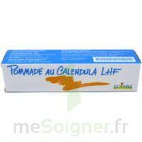 CALENDULA LHF POM T/20G