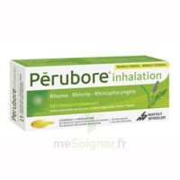 PERUBORE Caps inhalation par vapeur inhalation Plq/15 à TOULENNE