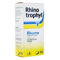 RHINOTROPHYL Solution pour pulvérisation nasale 1Fl/12ml à TOULENNE