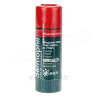 Dermophil Indien Réparation Forte Lèvres 4 g à TOULENNE