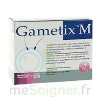 GAMETIX M, bt 30 à TOULENNE