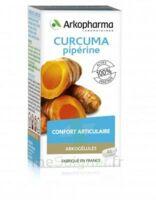 Arkogelules Curcuma Pipérine Gélules Fl/45 à TOULENNE