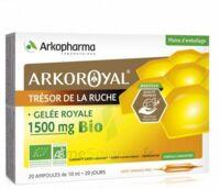 Arkoroyal Gelée royale bio 1500 mg Solution buvable 20 Ampoules/10ml à TOULENNE