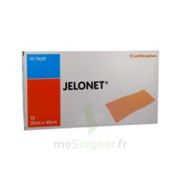 JELONET, 10 cm x 40 cm , bt 10 à TOULENNE