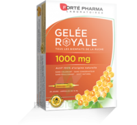 Forte Pharma Gelée royale 1000 mg Solution buvable 20 Ampoules/10ml à TOULENNE