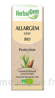 Allargem Solution buvable bio 30ml à TOULENNE