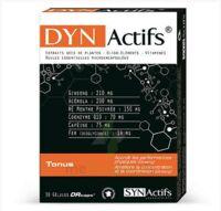Synactifs Dynactifs Gélules B/30 à TOULENNE