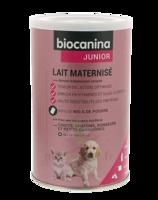 Biocanina Lait poudre maternisé B/400g à TOULENNE