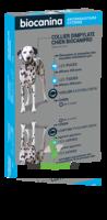 Biocanipro Collier chien B/1 à TOULENNE