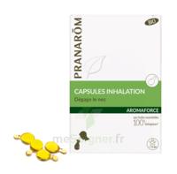Aromaforce Caps inhalation bio B/15 à TOULENNE